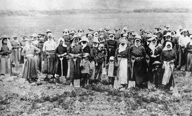 inmigracion japonesa peru